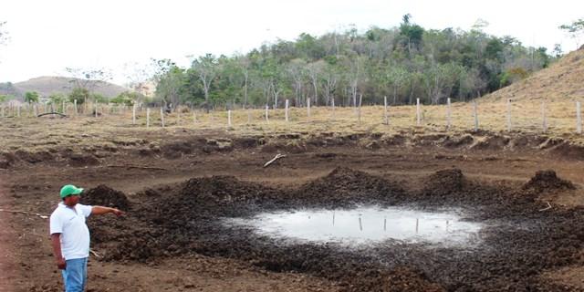 Las lagunetas  artificiales, donde bebe  el ganado, se secan de forma acelerada. (Foto Prensa Libre: Rigoberto Escobar)