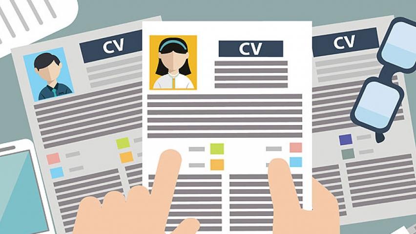 adapte su curriculum vitae a las expectativas de cada empresa destaque los conocimientos puntos