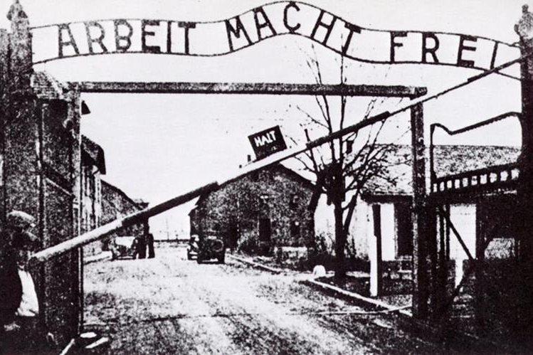 auschwitz: campo del horror