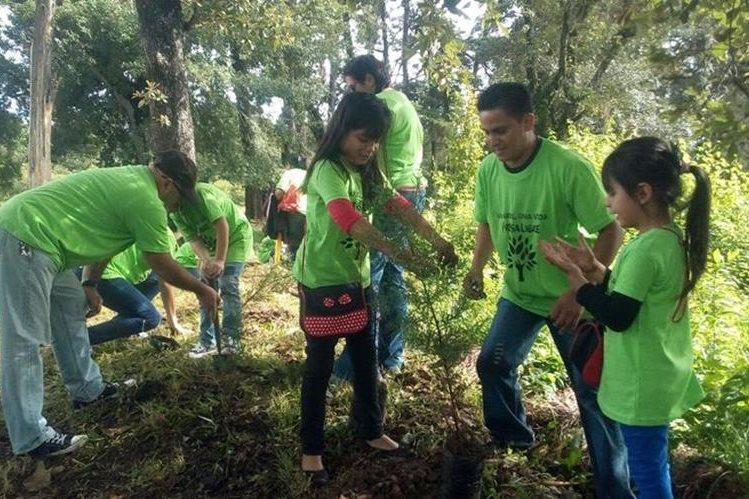 En la actividad participaron 150 colaboradores de Prensa Libre y sus familias (Foto Prensa Libre: Érick Ávila)
