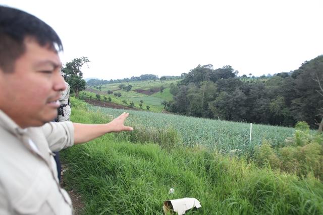La expansión de áreas de cultivo amenaza el resguardo del Cordillera Alux. (Foto: Hemeroteca PL)