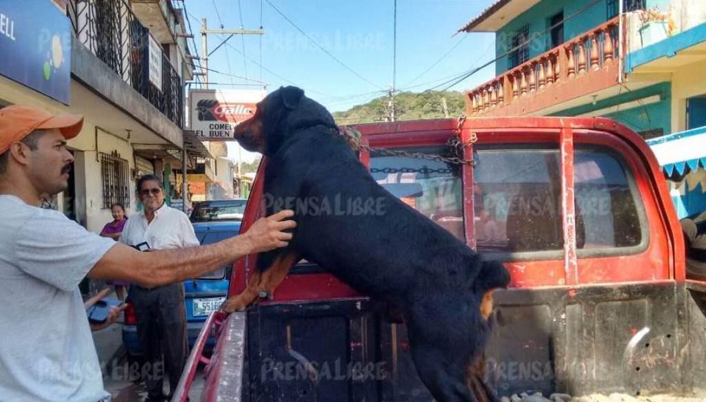 Billy Divas Medrano junto a su perro que será ejecutado el próximo miércoles. (Foto Prensa Libre: Oswaldo Cardona).