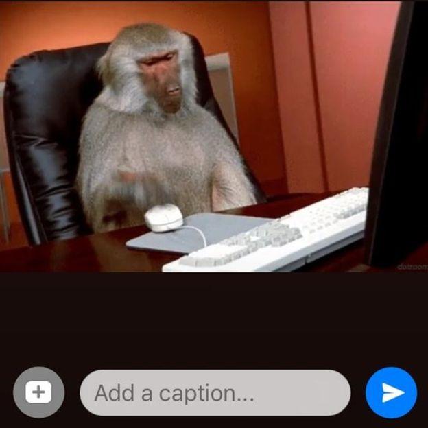 Si lo deseas, puedes agregar un texto a la imagen antes de enviarla. (BBC MUNDO)