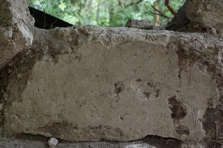 Los grafitis relacionados con la flora y fauna descubiertos en una habitación del templo V del Parque Nacional Tikal despiertan el interés de los arqueólogos, quienes creen que estos fueron tallados por niños. (Foto Prensa Libre: Rigoberto Escobar)