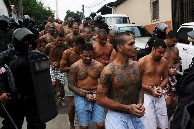 Trump busca acabar con las pandillas en Estados Unidos. (Foto: Hemeroteca PL)