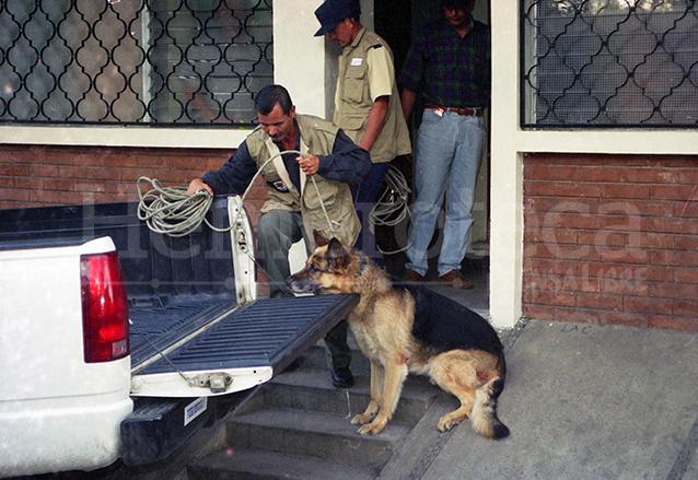 El perro Baloo fue secuestrado para ser sometido a estudios y determinar su presunta participación en la muerte de monseñor Gerardi. Foto de 1998. (Foto: Hemeroteca PL)