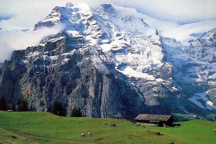 Los alpes suizos son visitados cada año por miles de turistas de todo el mundo. (Foto: lapatilla.com).