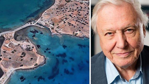 La nueva versión de Google Earth permite disfrutar de recorridos interactivos con la voz del naturalista británico David Attenborough.