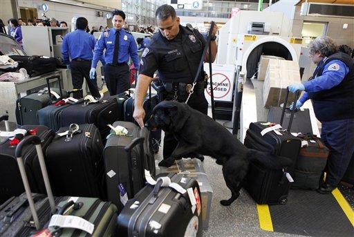 TSA restringe sustancias en polvo en vuelos hacia Estados Unidos