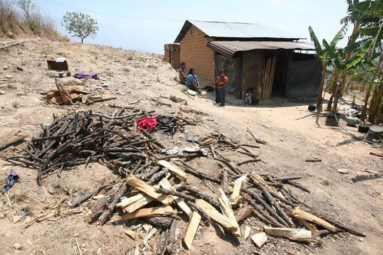 El Gobierno prevé que miles de familias del Corredor Seco se verán afectadas por la crisis alimentaria causada por una sequía prolongada. (Foto Prensa Libre: Hemeroteca PL)