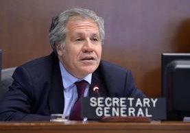 Luis Almagro, secretario general de la OEA, no podrá viajar a Cuba (Foto Prensa Libre: AP)