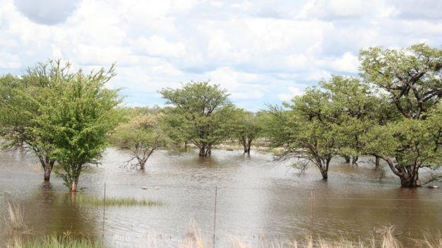 Los cambios cíclicos afectan la temporada de lluvias monzones.  (Foto Prensa Libre: Getty Images)