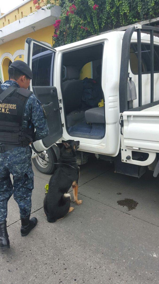 Un agente K-9 detectó en lugar donde estaban ocultos los paquetes de dinero. (Foto Prensa Libre: PNC)