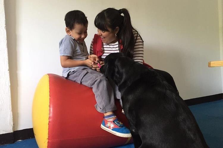 Los perros de asistencia son fundamentales en el tratamiento de casos de autismo. (Foto Prensa Libre: Cortesía Fundación Waybi)