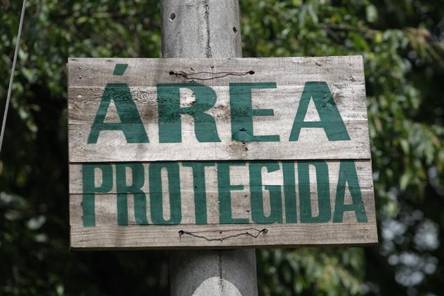 La cordillera Alux es fuente de vida, un área protegida desde 1997 que cobija manantiales, rica fauna, flora y genera aire puro. (Foto: Hemeroteca PL)