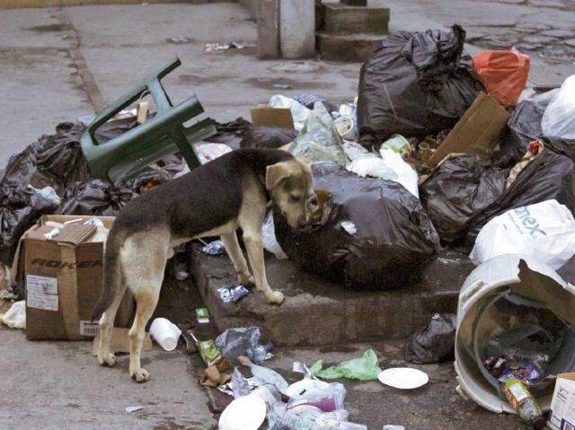 Una de las calles de la zona 1 de Xela, en las que amanecieron promontorios de basura. (Foto Prensa Libre: María José Longo).