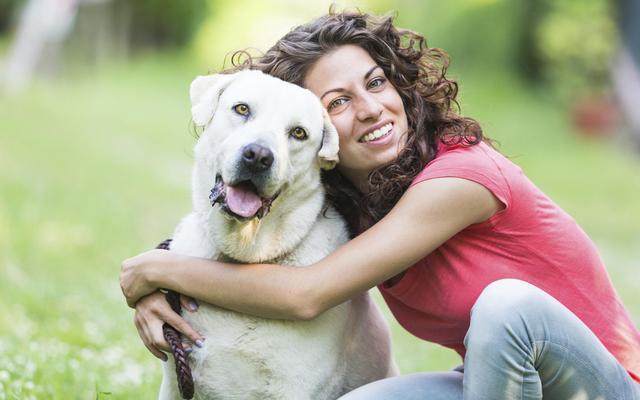 La compañía de animales refuerza sentimientos de autoestima y producen felicidad. También combaten la soledad y la depresión