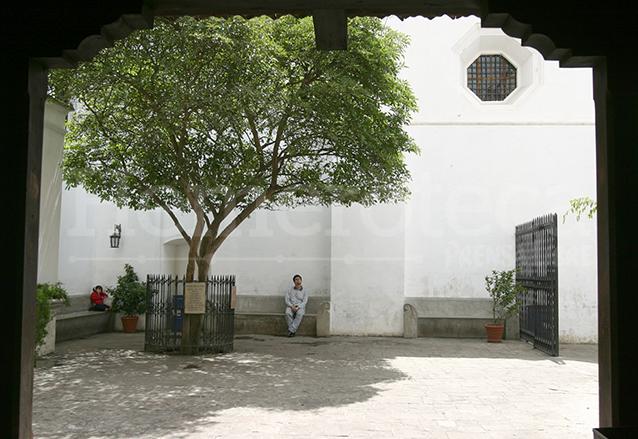 El árbol de esquisúchil cumplió recientemente 360 años. Está en la entrada a la tumba del Santo Hermano Pedro de San José Betancur en Antigua Guatemala. (Foto Prensa Libre: Hemeroteca PL)