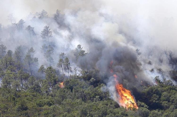 Un incendio forestal hace estragos en las afueras de la Riviera francesa(AFP).