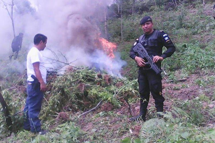 Autoridades queman parte de la marihuana decomisada en Camotán. (Foto Prensa Libre: Edwin Paxtor)