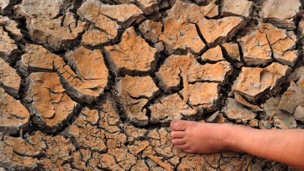 """""""Casi toda la costa atlántico pacífica de América empieza a notar los efectos del cambio climático"""", señaló Sanz. GETTY IMAGES"""