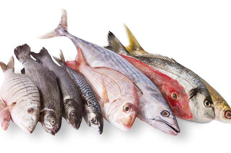 El pescado, algunos productos lácteos y la luz solar son la principal fuente de vitamina D.