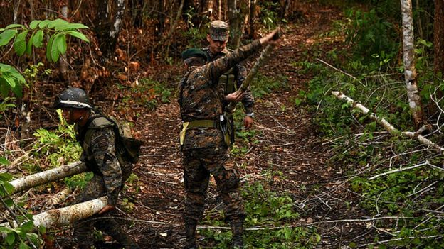 Las autoridades han descubierto varias pistas clandestinas en la zona. (AFP)
