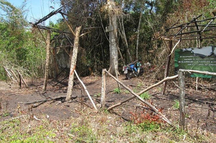 Seis ranchos de información fueron destruidos en el Parque El Mirador Río Azul, Petén. (Foto Prensa Libre: Rigoberto Escobar)