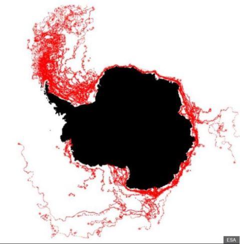 Las líneas rojas muestran las rutas tomadas anteriormente por otros témpanos. Por esto todo parece indicar que el iceberg se dirigirá hacia el Atlántico Sur. ESA