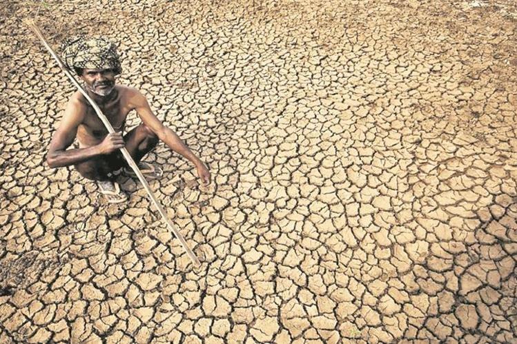 La prolongada sequía afecta a la agricultura alrededor del mundo. (Foto Hemeroteca PL)